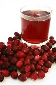 Hrana si medicament – merisorul sau afinul rosu