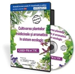 Cultivarea plantelor medicinale si aromatice