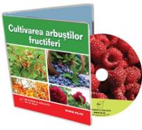 Cultiva arbusti fructiferi