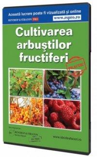 Cultivarea arbustilor fructiferi