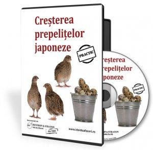 Cresterea prepelitelor japoneze