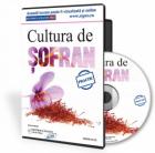Afacerea anului: cultura de sofran.