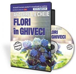 Afacere la cheie cu flori la ghiveci